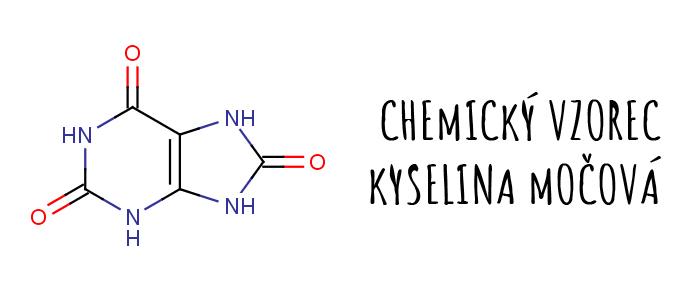 kyselina močová vzorec