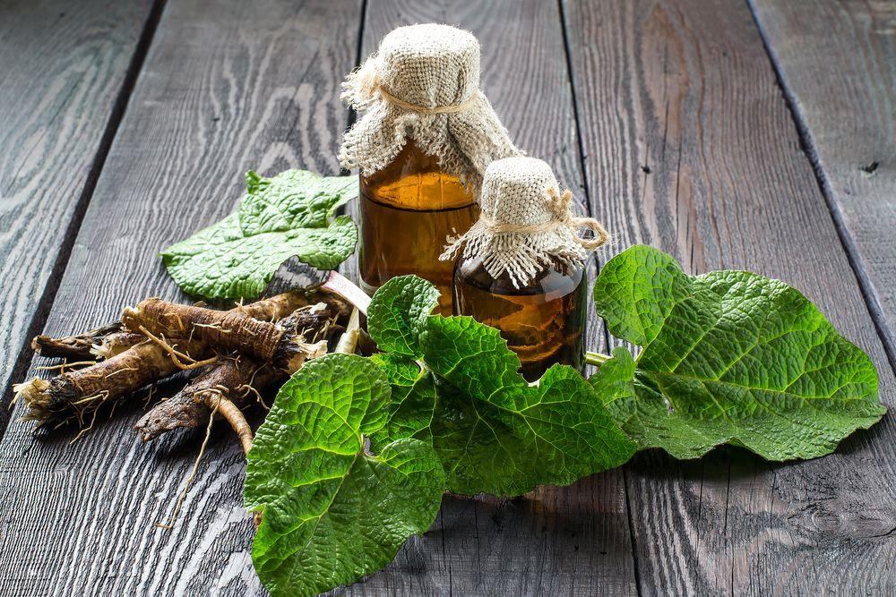 lopúchový olej je liečivý a má nízku cenu