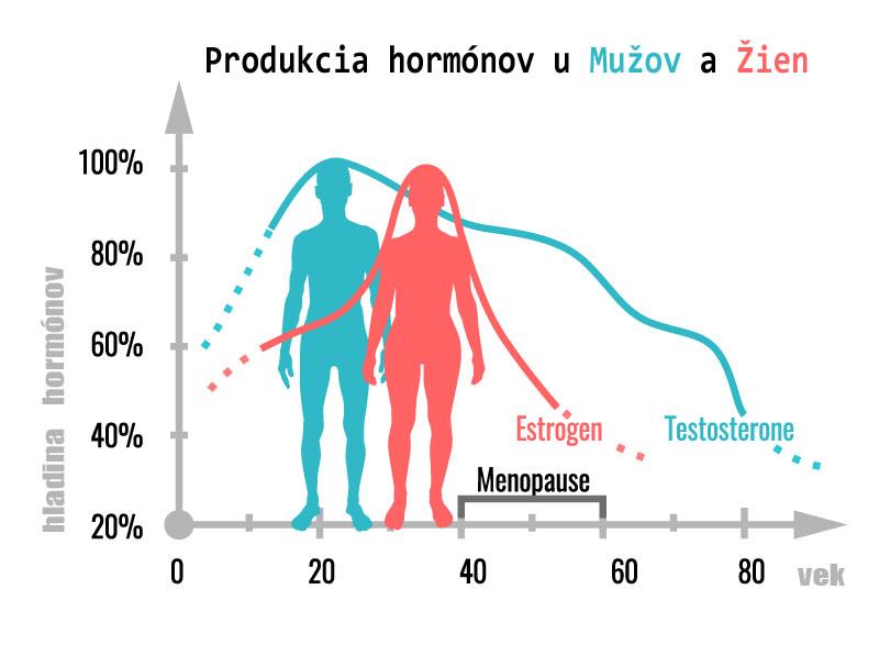 produkcia hormonov v tele