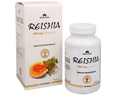 Reishi - Tablety - exktrakt