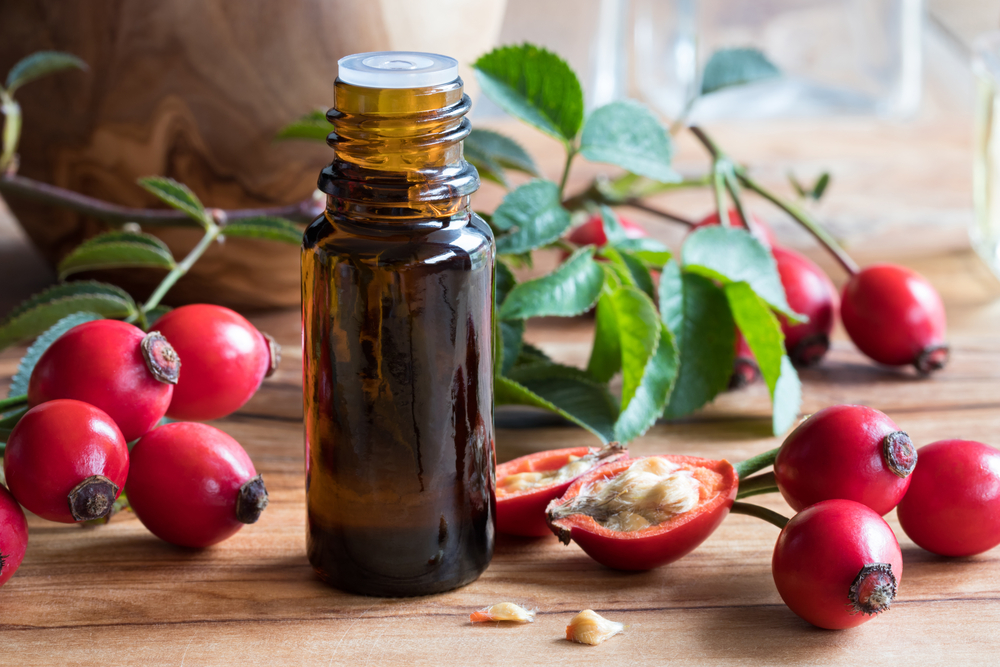 domáca výroba šípkového oleja
